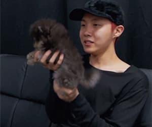 gif, park jimin, and jung hoseok image
