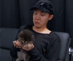 gif, kim seokjin, and bts image
