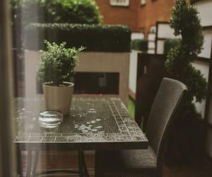 rain, flowers, and green image
