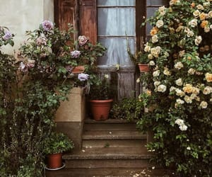 floral, france, and traveling image