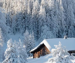 aesthetic, cabin, and frost image