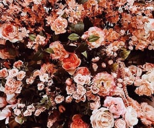 flowers, aesthetic, and pretty image