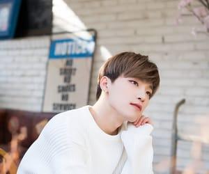 dino, Seventeen, and kpop image