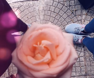 beauty, best friends, and flower image