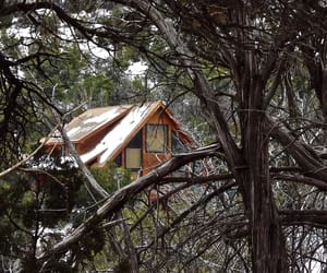 cabin, snow, and trees image