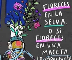 flowers, frases, and phrases image
