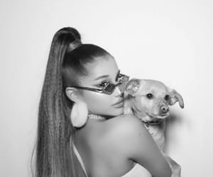 ariana grande, Toulouse, and 7 rings image
