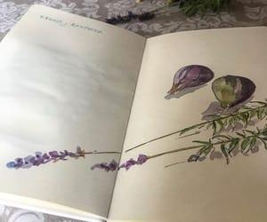 arte, colores, and dibujo image