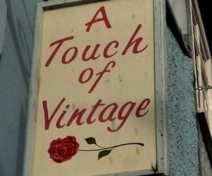 vintage, red, and rose image