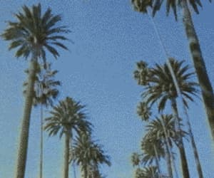 80s, beach, and gif image