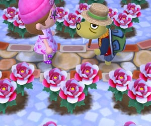 animal crossing, flowers, and winter image