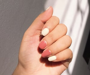 manicure, nails, and gel nails image
