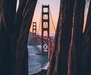 bay area, california, and golden gate bridge image