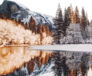 nature, snow, and photography image