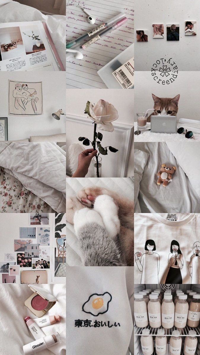aesthetic, wallpaper, and white image