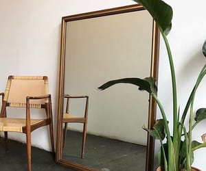 mirror, plants, and aesthetic image