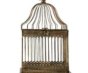 antique, birdcage, and vintage image
