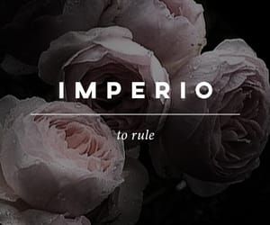 harry potter and imperio image