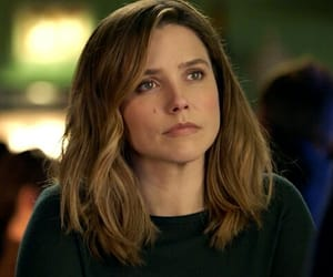 chicago pd and erin lindsay image