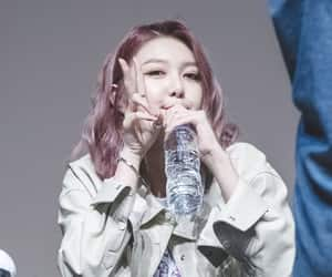 dreamcatcher, purple hair, and fansign image