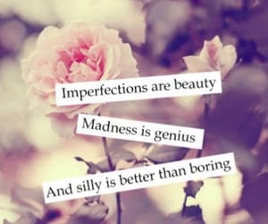 beauty, quote, and silly image