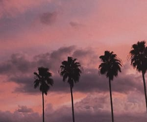 aesthetic, beauty, and california image