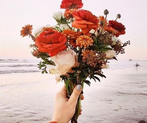 flowers, beach, and red image