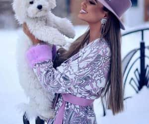 dog and fashion image