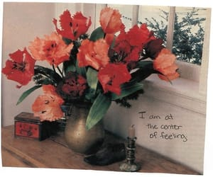 anne sexton, arrangements, and bouquet image