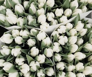 aesthetic, theme, and white bouquet image