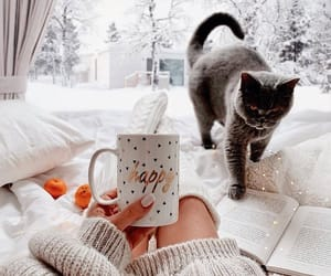 cat, snow, and coffee image