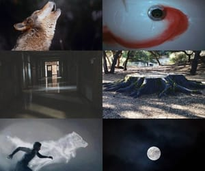 aesthetic, tumblr, and luna llena image