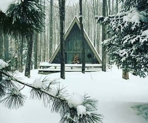 cabin, nature, and white image