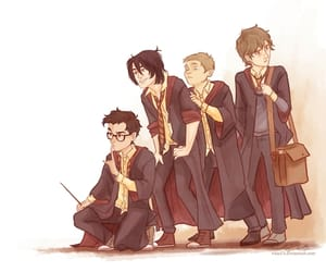 harry potter, marauders, and sirius black image