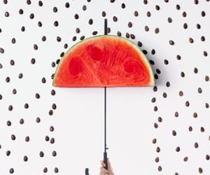 fruit, minimal, and watermelon image
