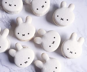 Cookies, rabbit, and sweets image