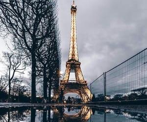 beautiful, nature, and paris image