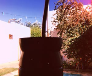argentino, summer, and mate image