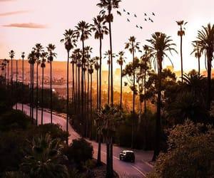 california, la, and los angeles image