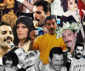 Collage, Queen, and Freddie image