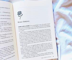 book, books, and amo livros image