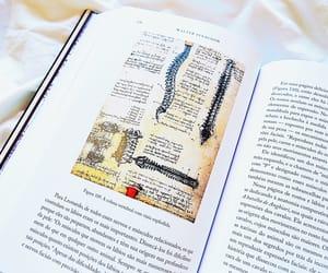 art, book, and livro image