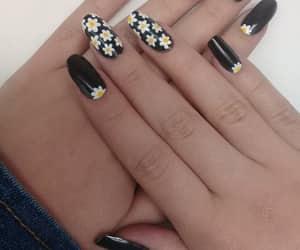 blanco y negro, diseno, and flores image