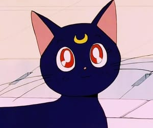 90s, anime, and cats image