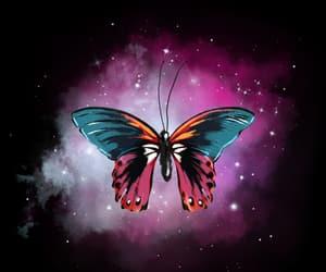 background, borboleta, and br image