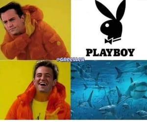 chandler bing, meme, and comedy image