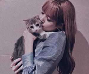 lisa, blackpink, and kpop image