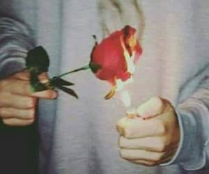 rose, fire, and aesthetic image