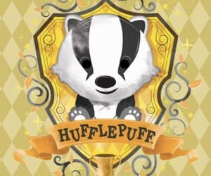 harrypotter and hufflepuff image