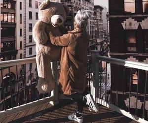 bear, brown, and city image